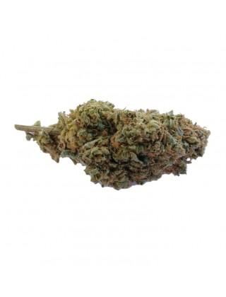 Marijuana Light Yin e Yang|Zacà