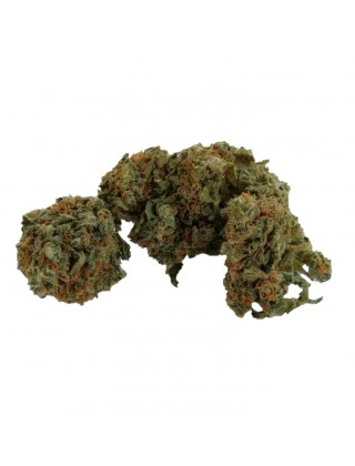 Marijuana Legale Enjoy|Zacà