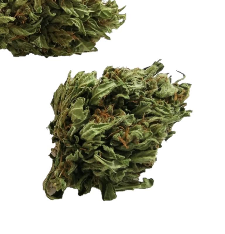Cannabis Light Original|Zacà