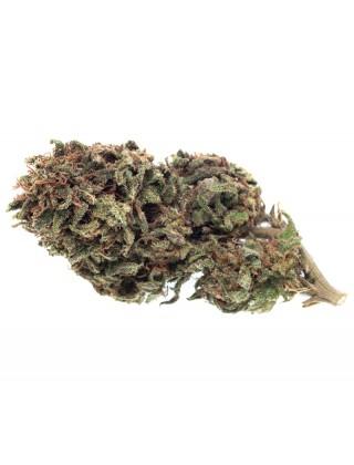 Cannabis Light No.14|Zacà