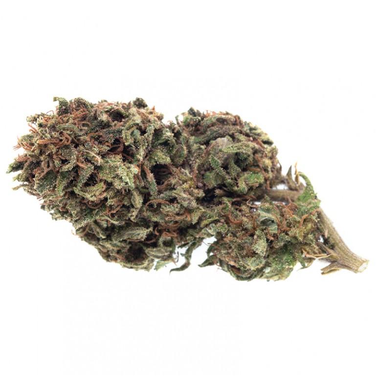 Cannabis Light No.14 Zacà